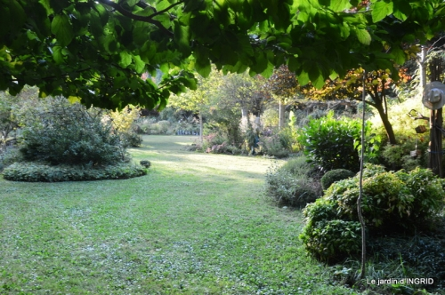 male ancienne,septembre jardin,couronne,bouquet 089.JPG