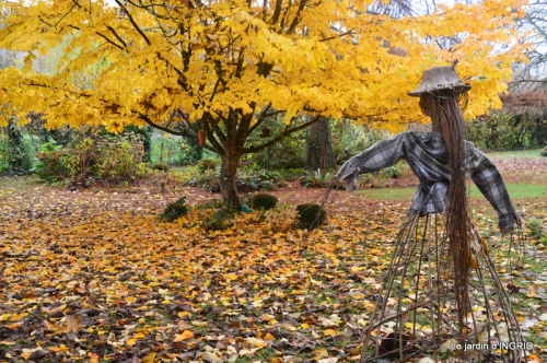 troc,automne,serre 069.JPG