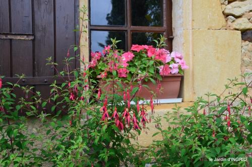 jardin,chez Bernadette,puces,cygnes,pluie 182.JPG