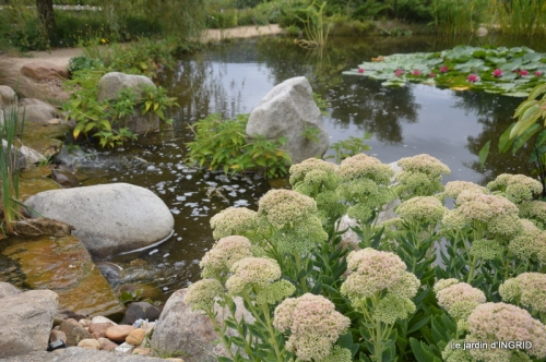 orage,puces,bouquet,Anniv.Ines,Brantome,Jardins d'eau 262.JPG