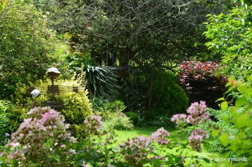 potager,chenille,pour le 18 juin,tour du jardin 036.JPG