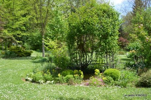 jardin avril 086.JPG