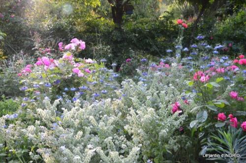 Trémolat,petit jardin,Julie 063.JPG
