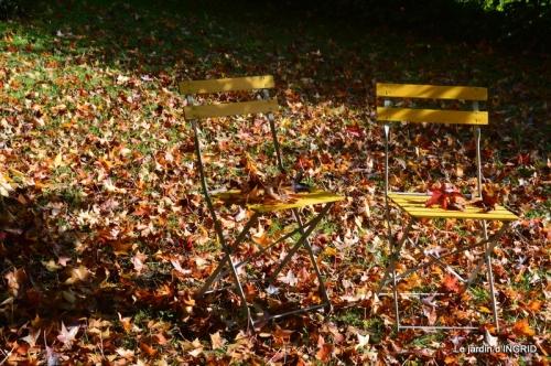 citrouille fleurie,décos jardin,automne 087.JPG
