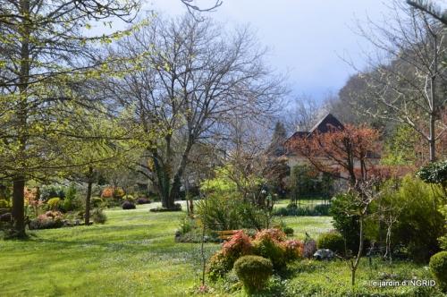 semis,bassin,tour du jardin 104.JPG