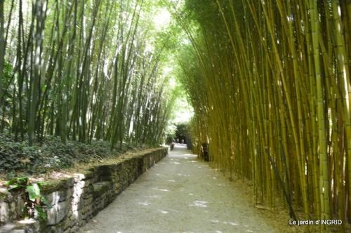 bambous Roque Gageac,jardin,bouquet 181.jpg