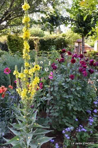 dahlias,jardin,puces st Avit Seigneur,Paniers Issigeac,Romane 042.JPG