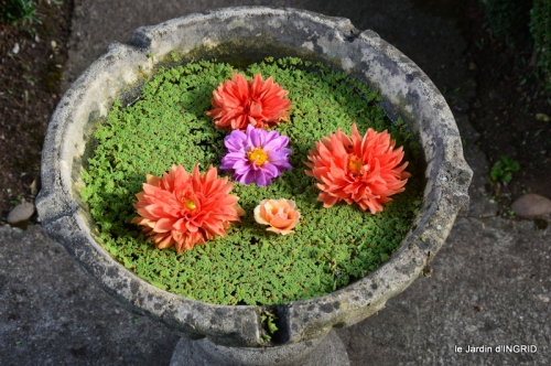 confiture,bouquet,petit jardin 045.JPG