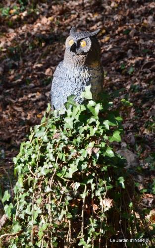 taille,arbustes,poinsettia,décos 066.JPG