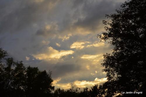 fuschias,criquet,pluie,St Mayme de Peyreyrol,copines 036.JPG