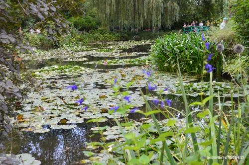 bouquet,jardin de Monet,les vaches,Pourville sur mer 105.JPG