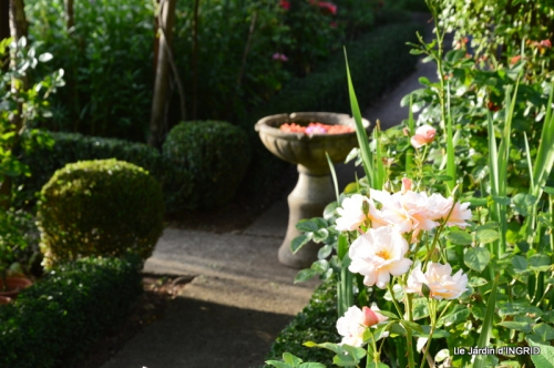confiture,bouquet,petit jardin 067.JPG