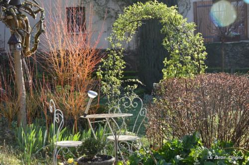 bouquet mamy,jacinthes,semis,jardin 044.JPG