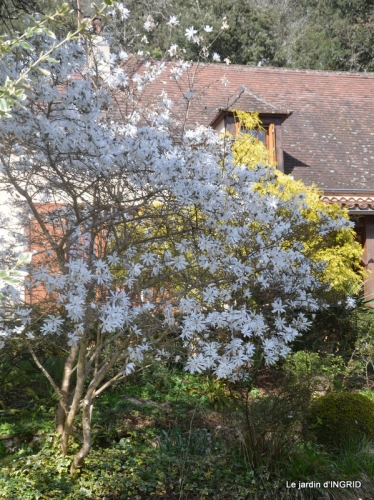 Romane,arbre de Paques,chez Bernadette,jardin 029.JPG