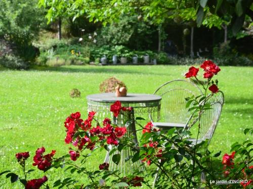les roses,les 4 filles,jardin,Julie,coquelicots,cygnes 157.jpg