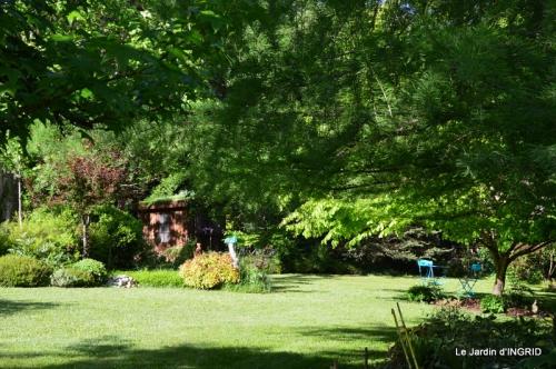 jardin soir et matin 057.JPG