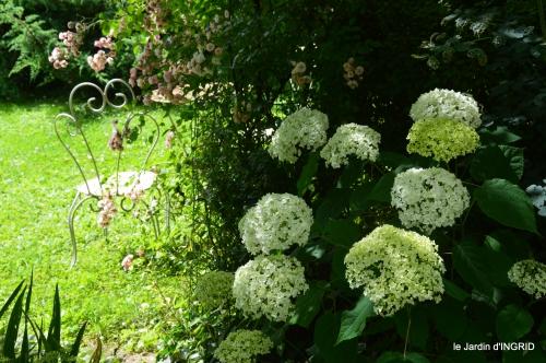 potager,chenille,pour le 18 juin,tour du jardin 037.JPG