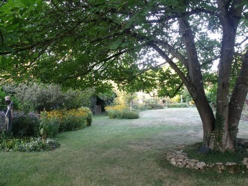 jardin,Arya,voiture,kois,nicky 009.JPG