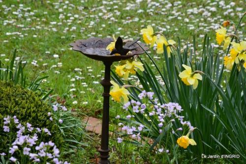 printemps,osier,tipi 032.JPG