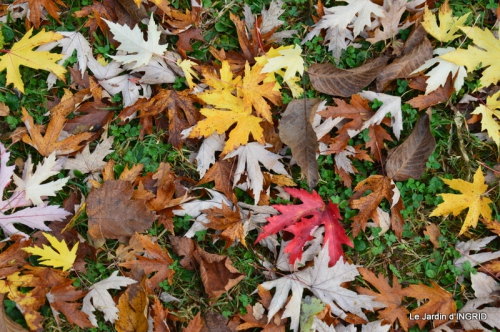 Romefort,bord de Creuse,vent,feuilles,jardin,canal 162.JPG