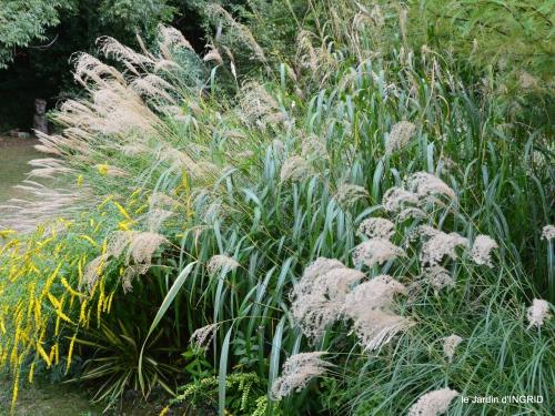 canal,au fond de l'Or,Julie,feuilles 135.JPG