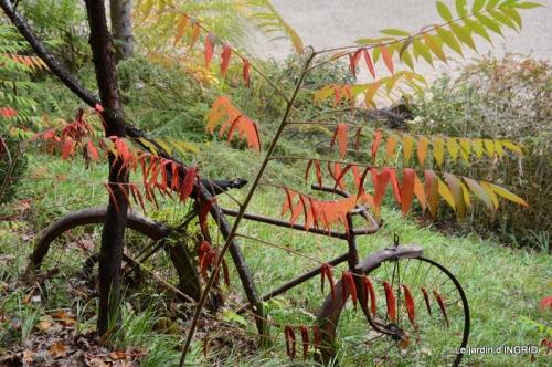 jardin automne,chez Caro avec Julie 052.JPG