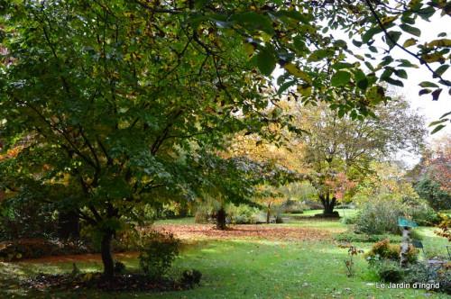 automne,arbres,inondation 093.JPG