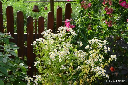potager,chenille,pour le 18 juin,tour du jardin 088.JPG
