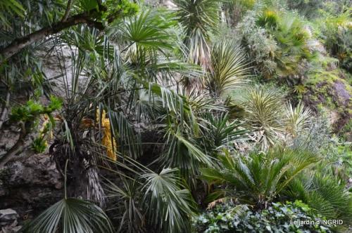 la Roque Gageac,Ines,jardin 034.JPG