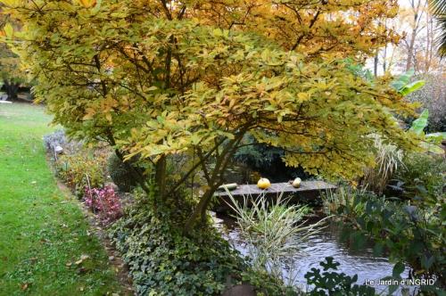 les arbres en automne,cabane 051.JPG