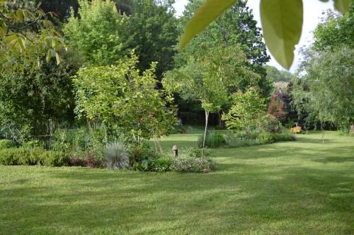 jardin,premières roses,colline,avant l'orage 121.JPG