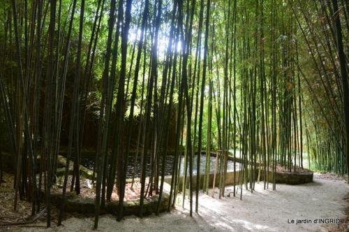 bambous Roque Gageac,jardin,bouquet 175.jpg