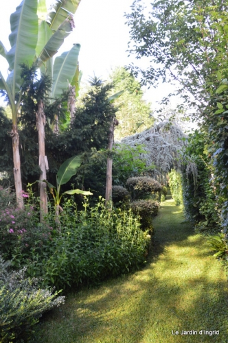 en juin jardin 184.JPG