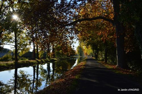 jardin automne,voisinage,canal 180.JPG