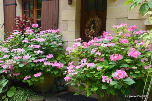 juin jardin,bouquet,sophie 037.JPG