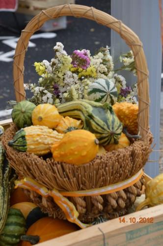 champignons,citrouilles,st Mayme de Péreyrol,fuschias,jardin aut 094.JPG