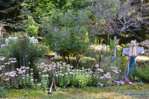 mon coin,Monique,les oies,mon jardin 016.JPG