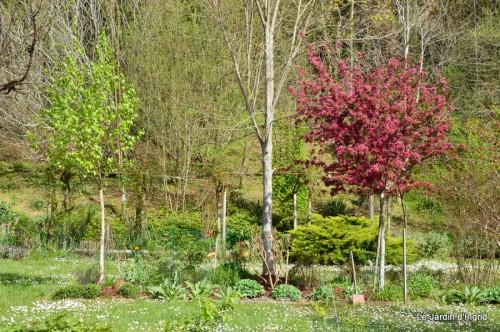 jardin mars 016.JPG
