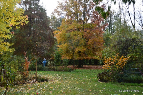 jardin serre bucher automne 011.JPG