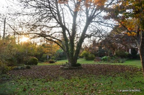canal,automne,tonte des feuilles 067.JPG
