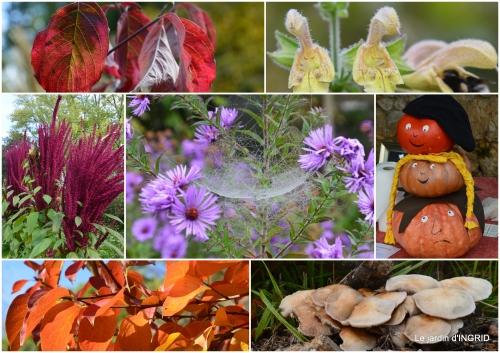 2017-10-21 jardin automne,chez Caro avec Julie1.jpg