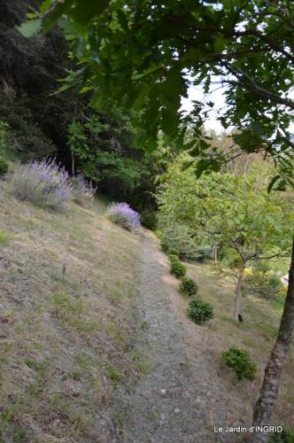 jardin,premières roses,colline,avant l'orage 018.JPG