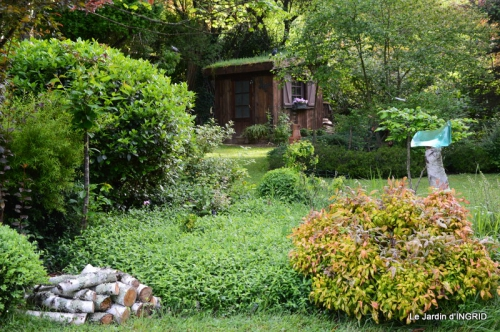 jardin soir et matin 078.JPG