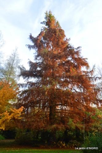 canal,automne,tonte des feuilles 059.JPG