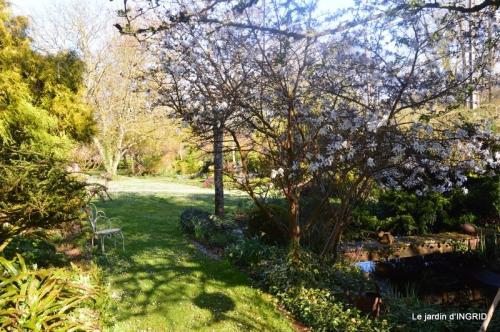 semis,bassin,tour du jardin 046.JPG