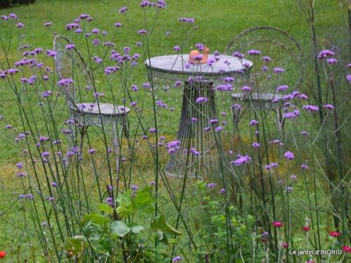 mon jardin,dégats buis, 100.JPG