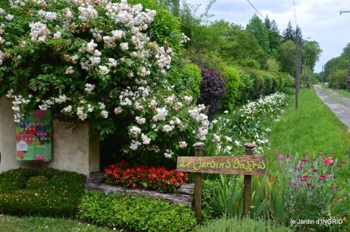 cygnes,Sophie,jardin en mai 079.JPG