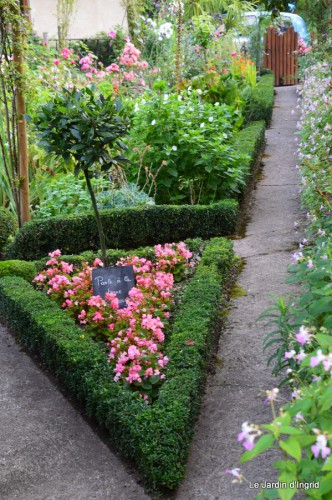 tournesols,pt jardin,nénuphard,libellules,lavande bouquet,carava 038-001.JPG