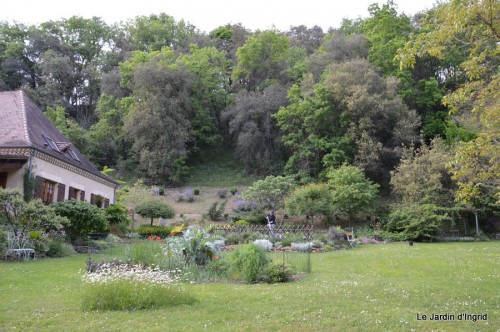 jardin,premières roses,colline,avant l'orage 035.JPG