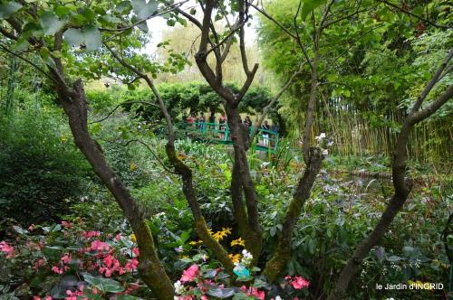 bouquet,jardin de Monet,les vaches,Pourville sur mer 139.jpg